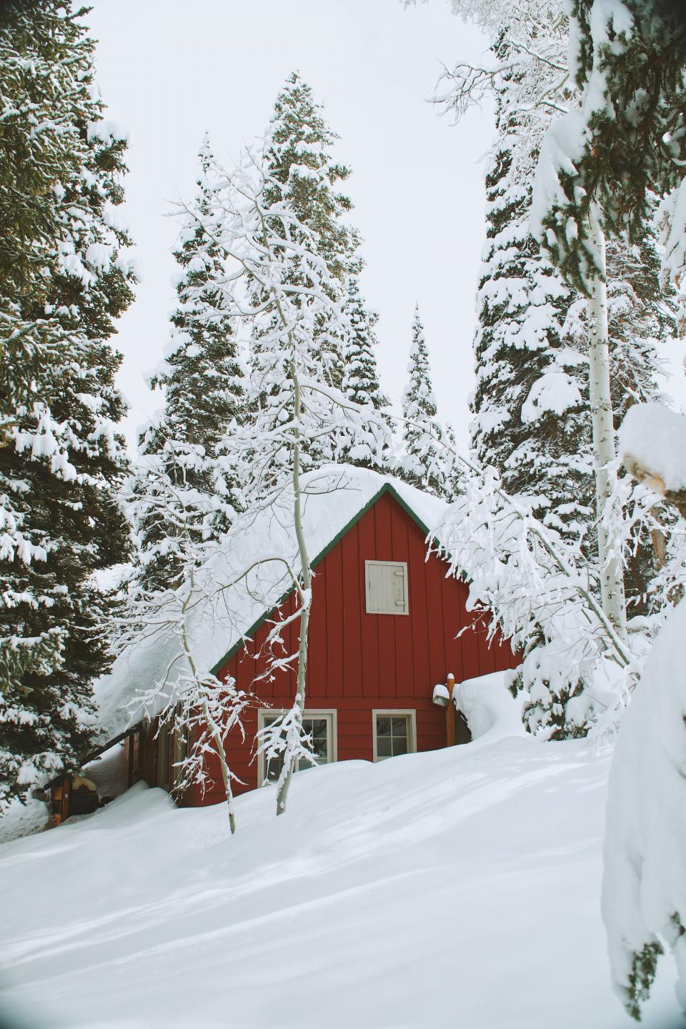 snow winter white cold weather ice trees plants nature barn cabin house home