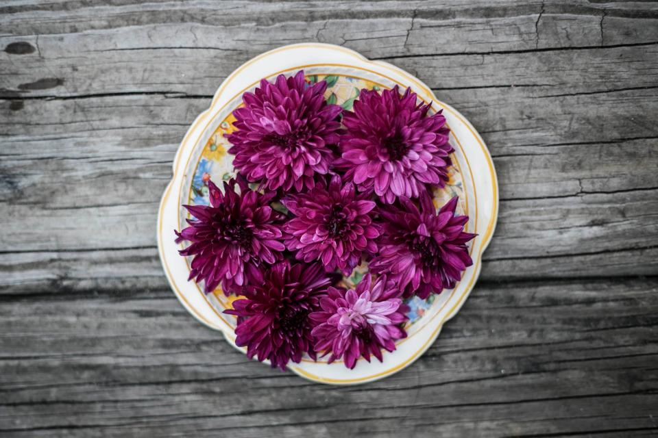 wood table plate purple pink flower bloom petals