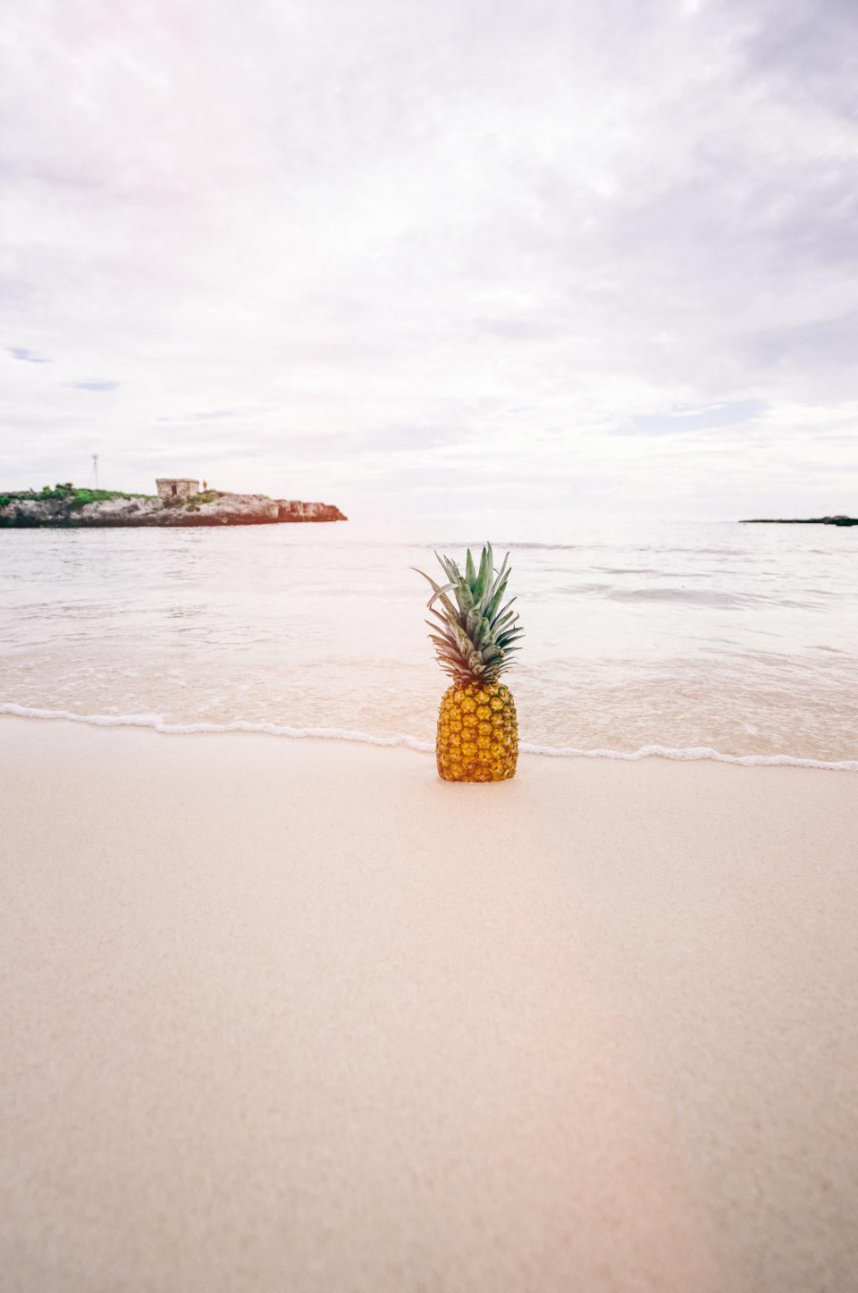 pineapple dessert appetizer fruit juice crop beach ocean sea sand waves nature