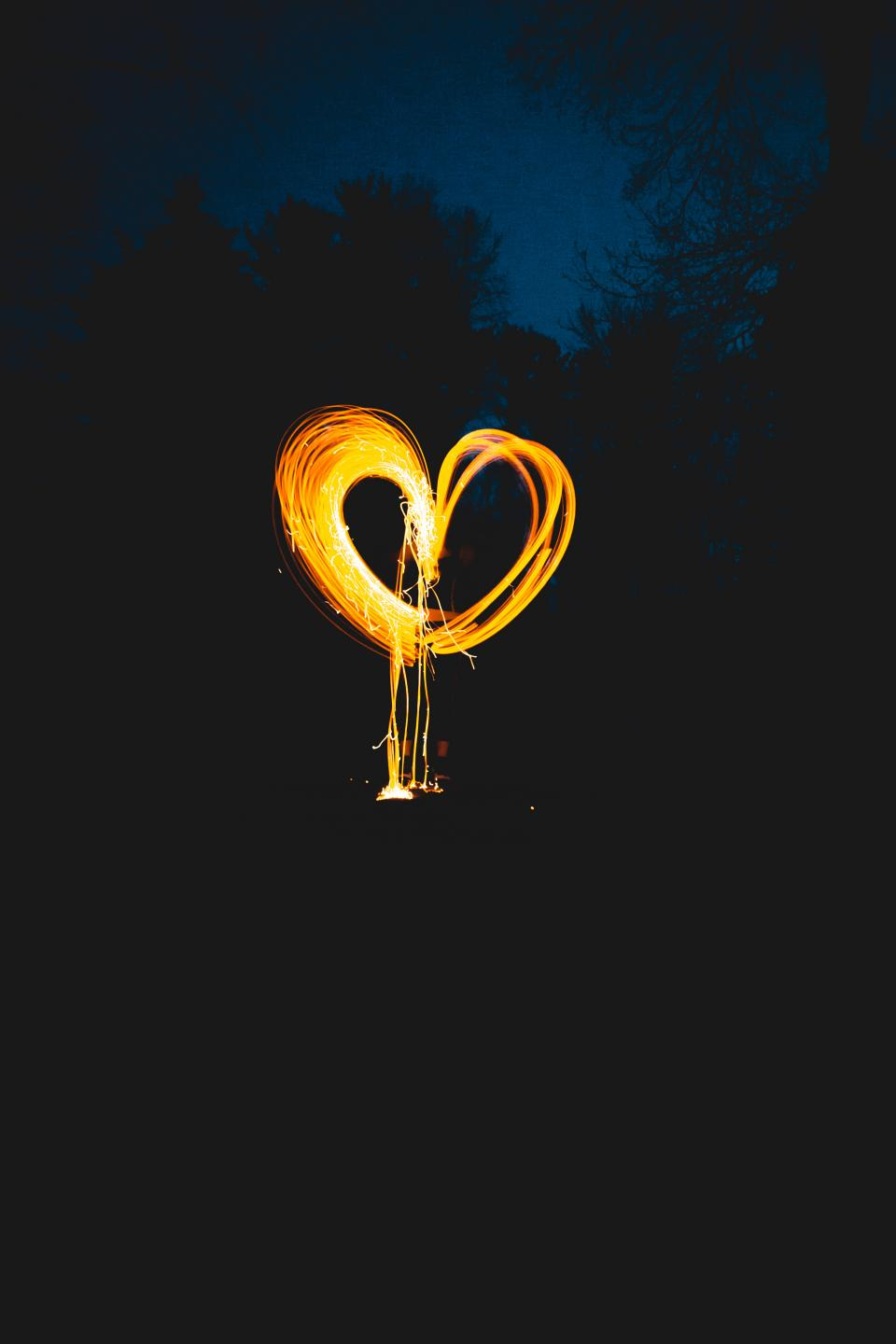 photography heart light painting nature trees night dark