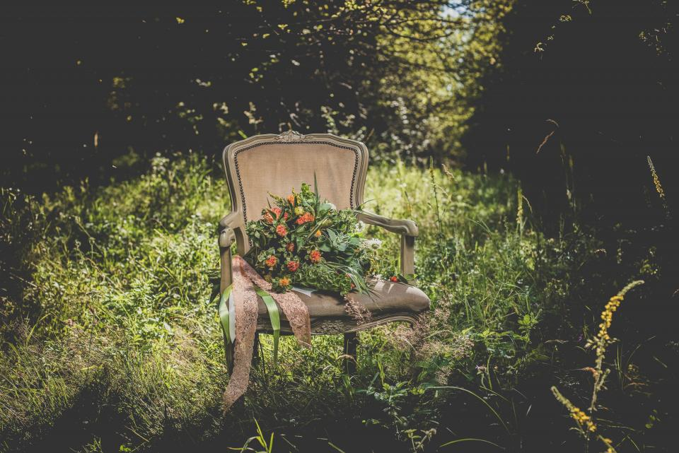 flowers chairs plants nature outdoor green grass trees