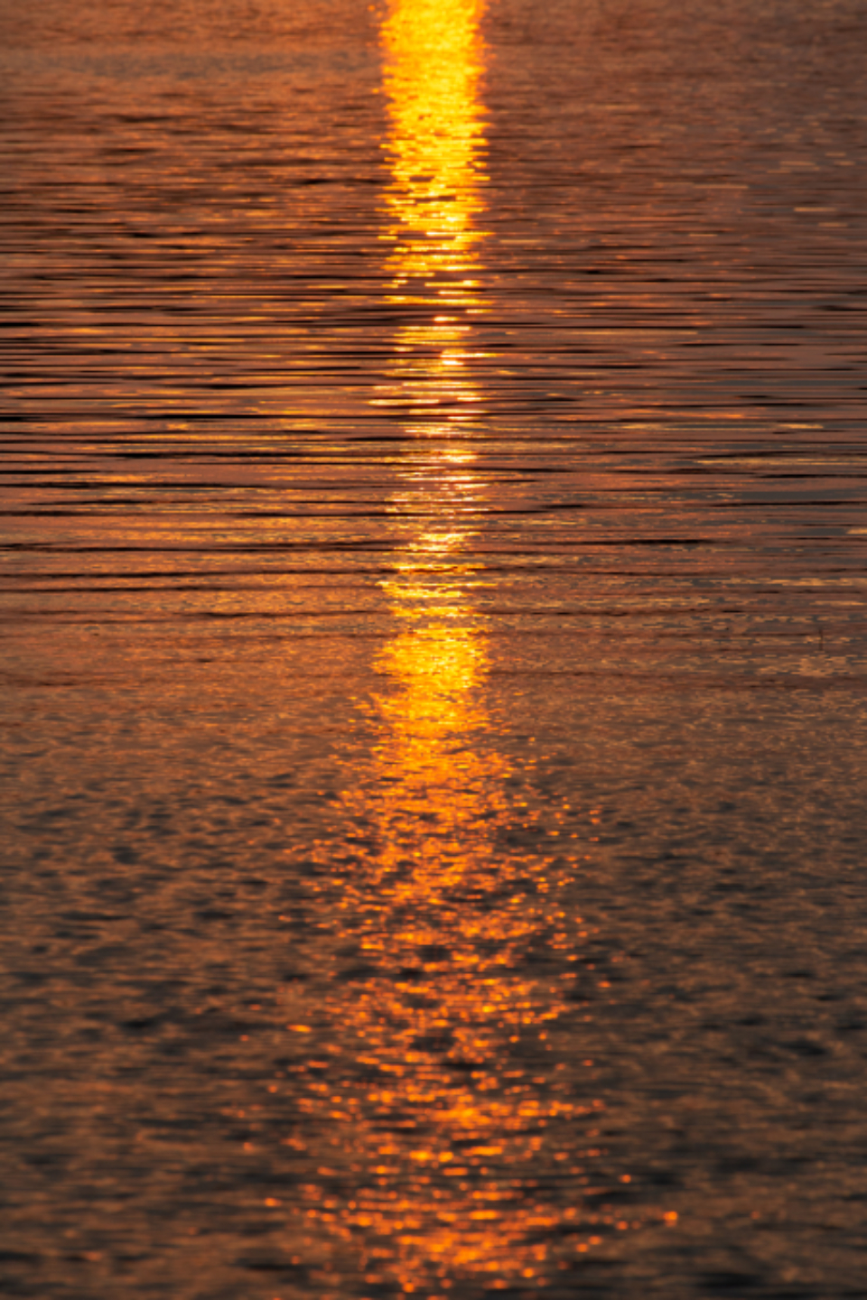 water sunset sunlight waves nature outdoors dusk lake ripples warm