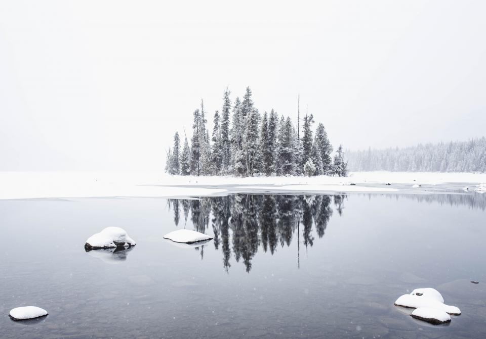 snow winter white cold weather ice nature travel adventure trees reflection water river woods forest