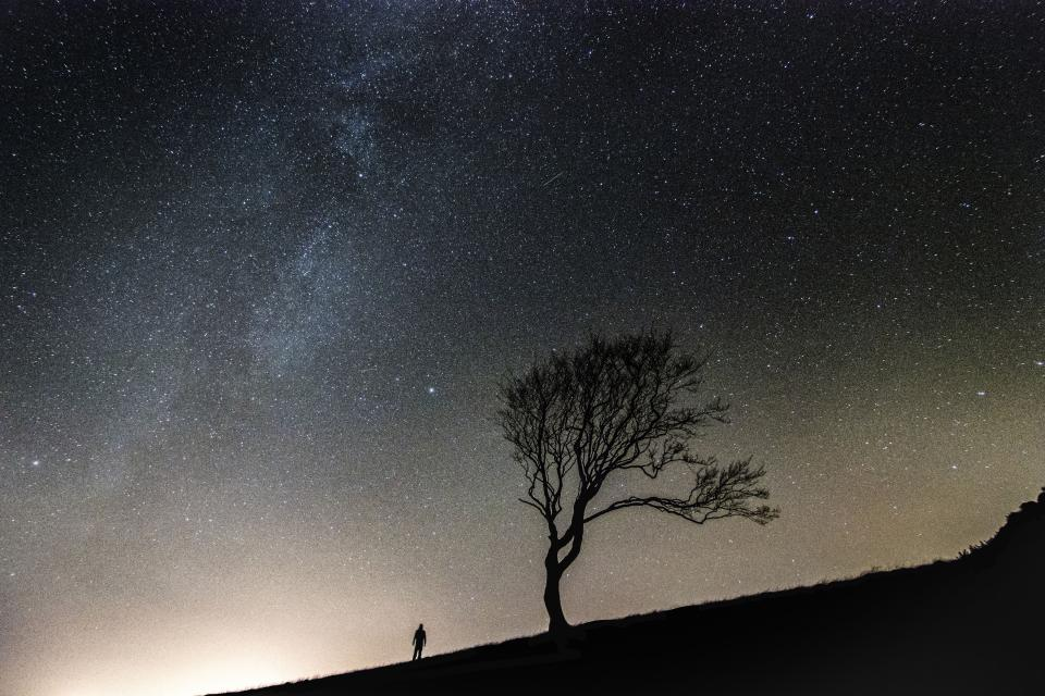 stars galaxy space astronomy night dark evening sky silhouette shadow trees