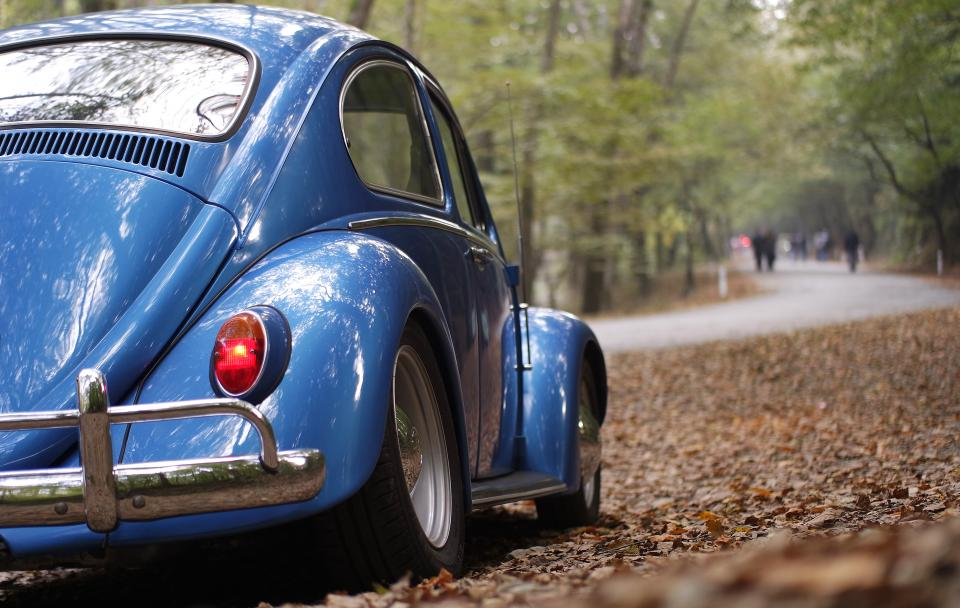 car vehicle transportation old vintage volkswaggen travel adventure blue shiny road woods forest leaves dried