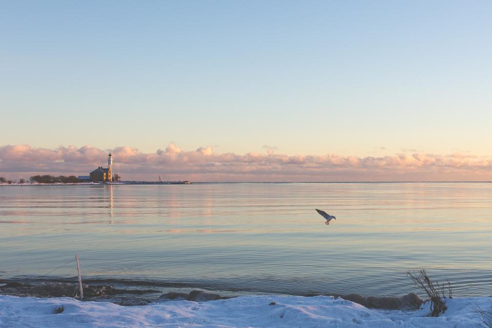 sea ocean water snow winter nature bird animal flying horizon sky clouds sunset sunrise lighthouse