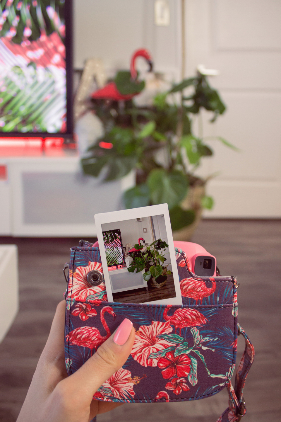 polaroid photo interior design pink television purse house home plant wood floor