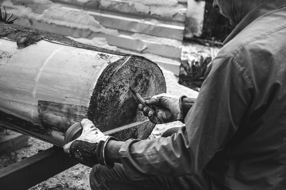 guy man male people work measure log wood timber black and white