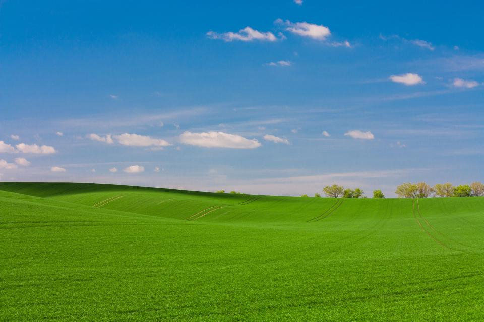 green grass grassland mountain landscape nature field farm blue sky clouds tree plant