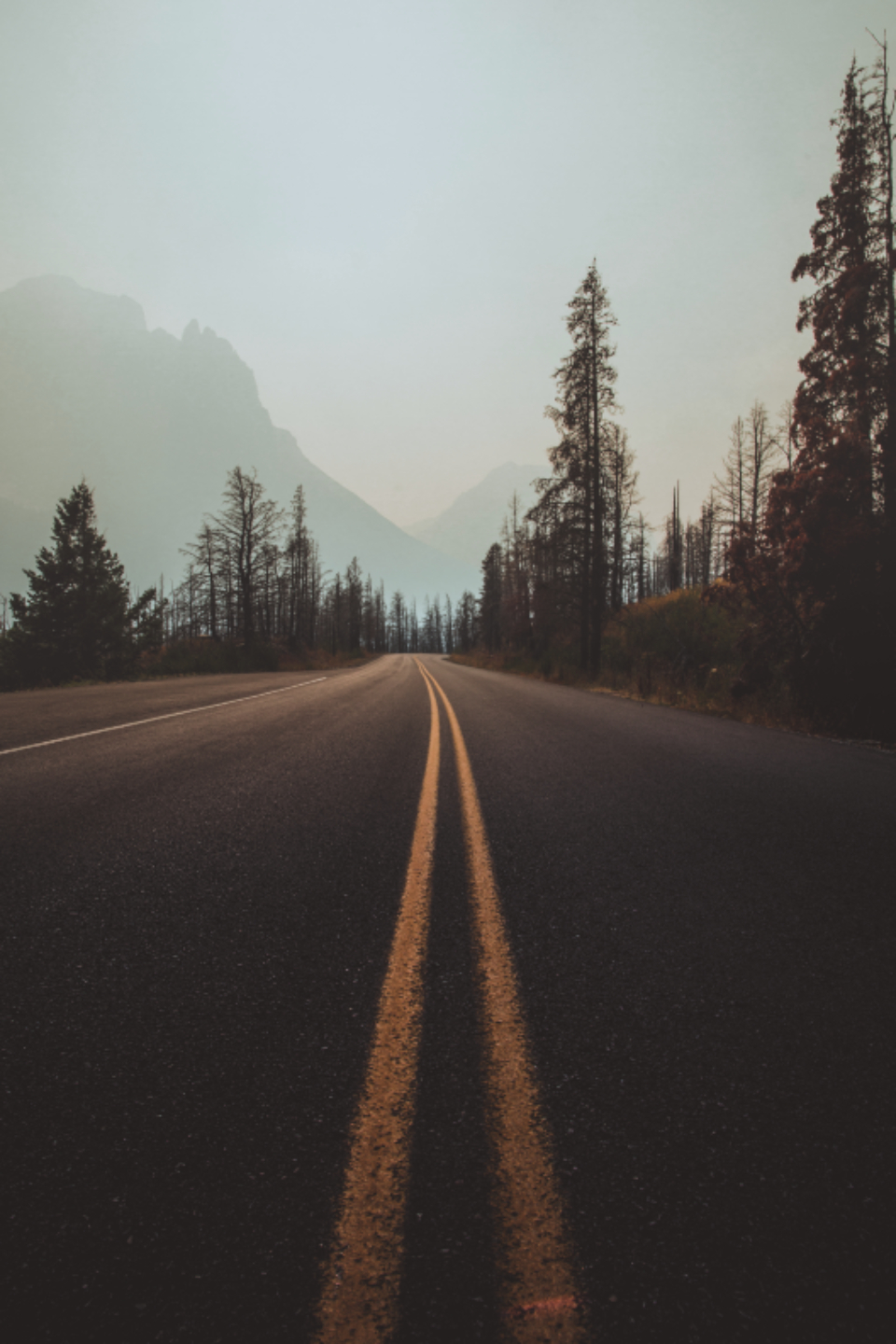 road movement drive driving pavement desert dirt landscape nature outdoors trees mountains mountain travelling travel