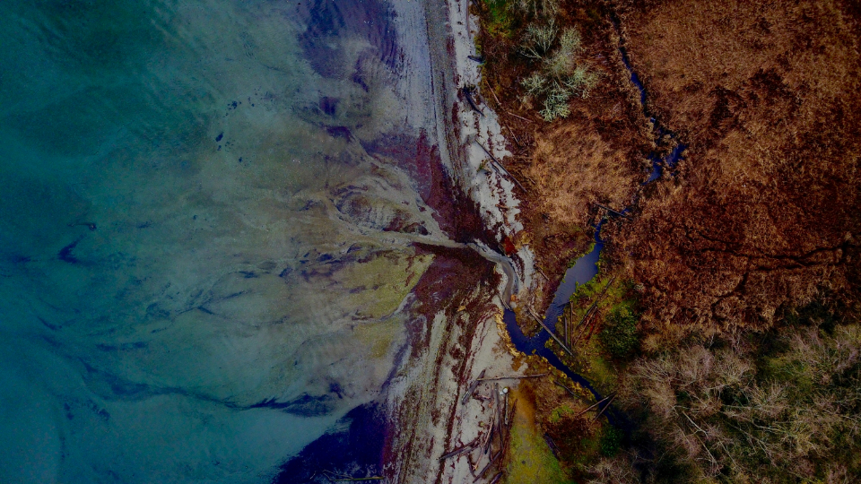 aerial land sea shore waves coast ocean colorful water nature outdoors above debris trees wetland sand natural pattern abstract