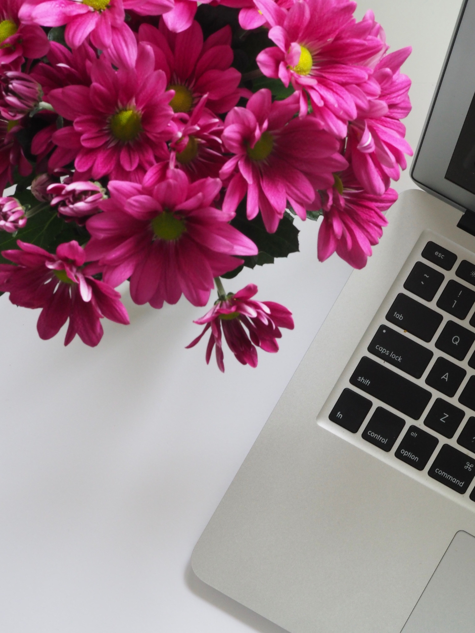 mac pink flowers white table minimal apple keyboard device button computer laptop macbook technology