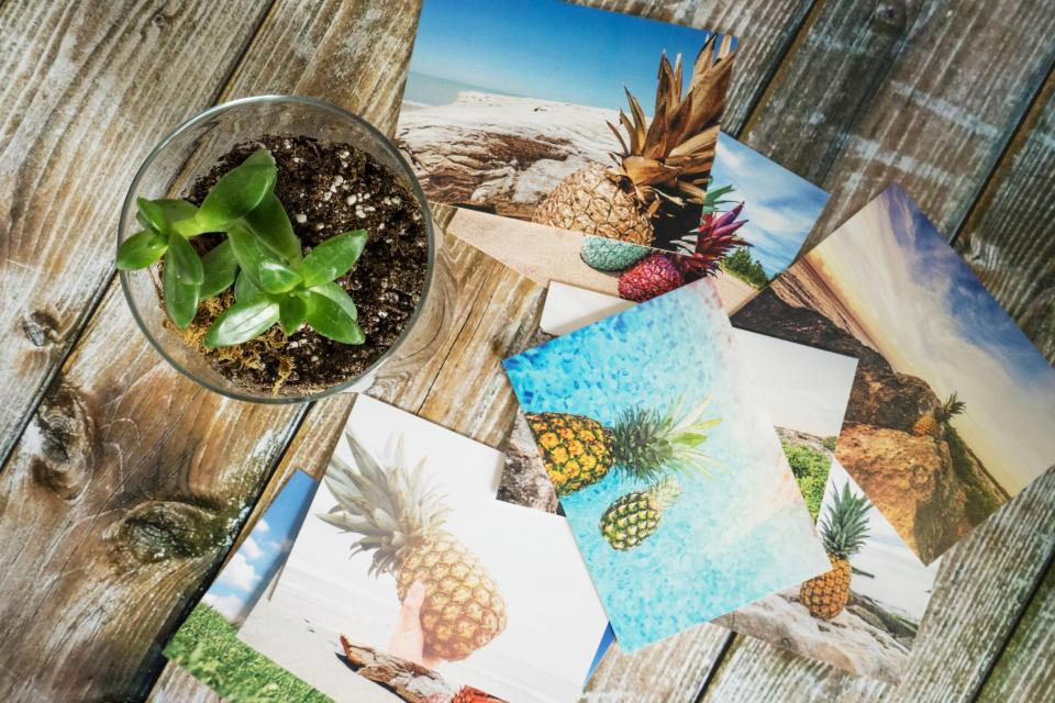 pineapple photo picture wooden table flowerpot interior plants nature