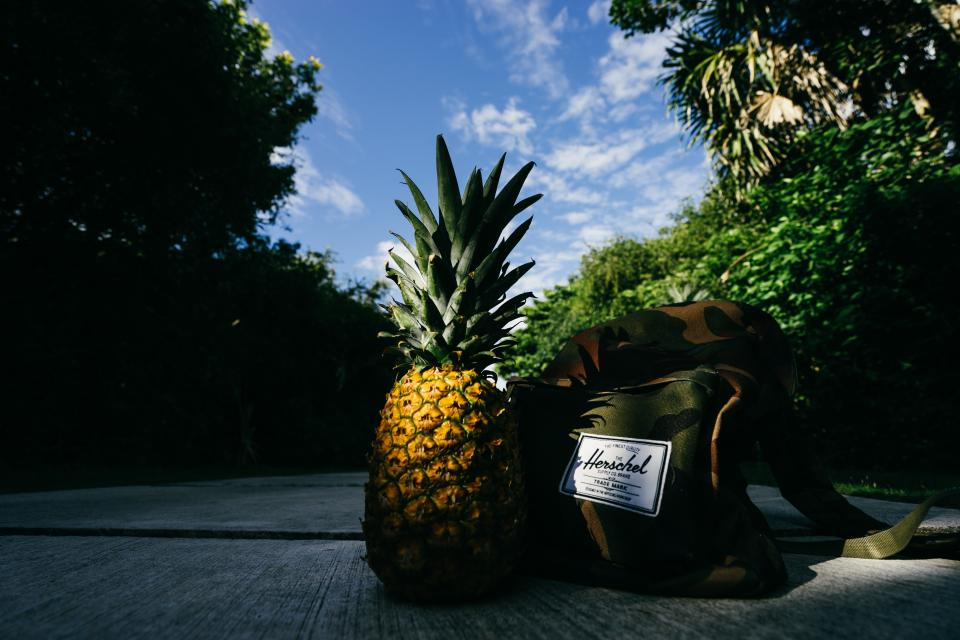 pineapple dessert appetizer fruit juice crop road bag herschel trees nature clouds sky green leaves