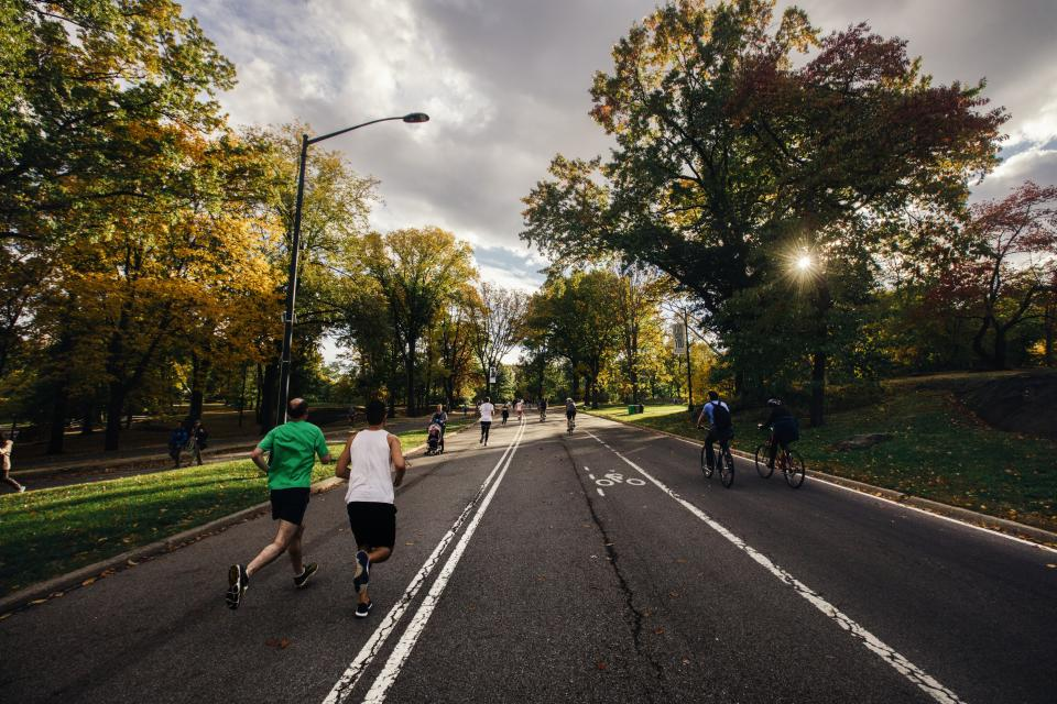 running fitness exercise runners people street road bikes bicycles biking cyclists trees nature sunshine city friends health