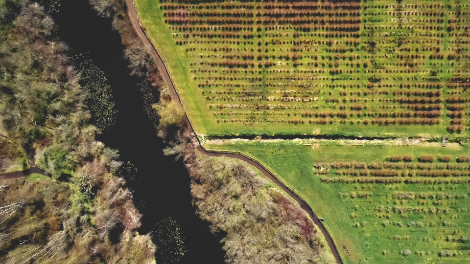 farm land aerial river water landscape drone above nature outdoors grass farming farmland natural pattern flight