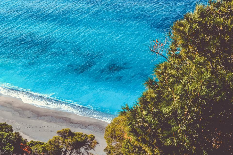 sea ocean blue water waves nature beach coast sand seashore green trees plants
