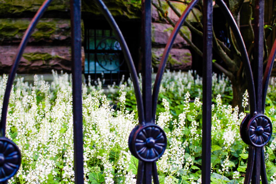 metal fence flowers iron ornate black bricks architecture detail garden city gate boundary