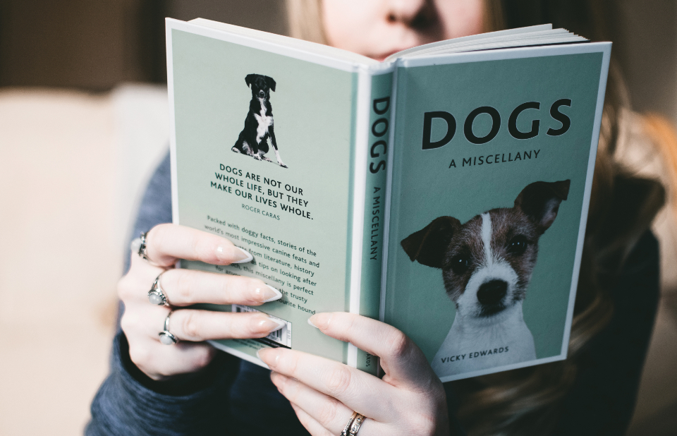 woman reading book dogs pet animals people