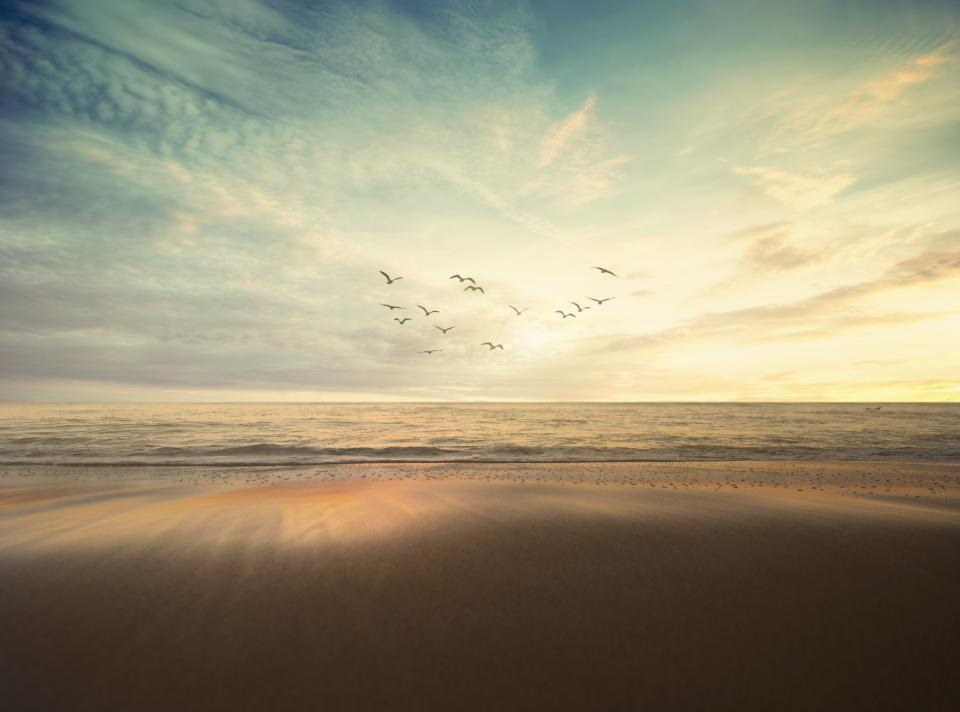 sea ocean nature waves adventure travel sky clouds birds flying dark sand