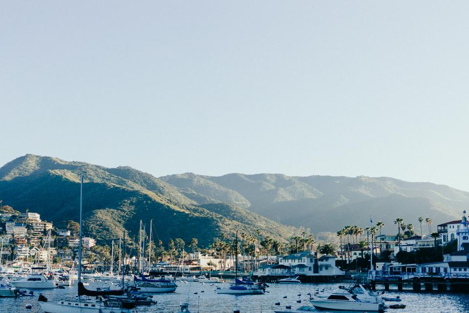 catalina island boats marina harbor harbour ships palm trees mountains hills sunrise sky houses buildings town