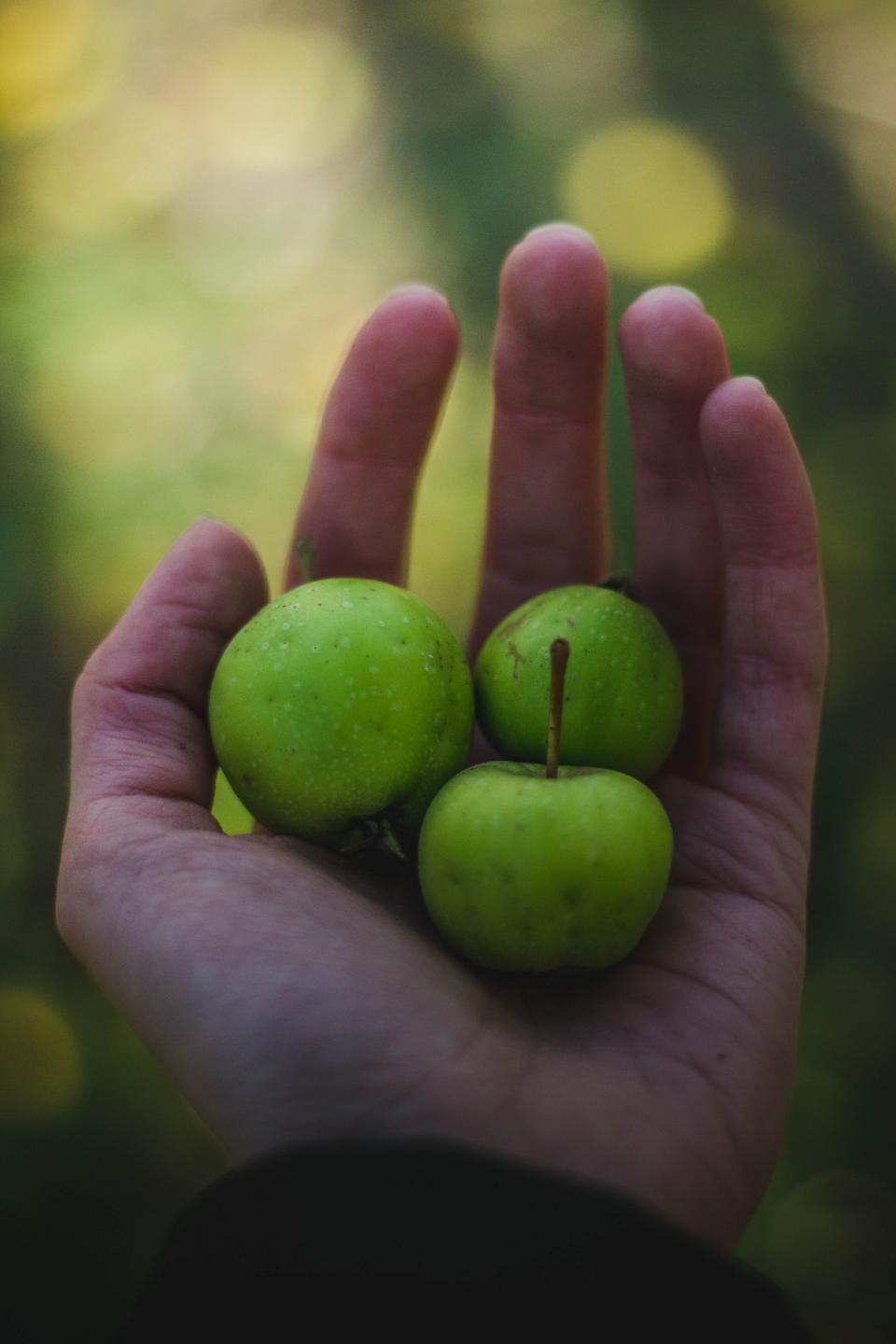 green apple fruit juicy food palm hand blur