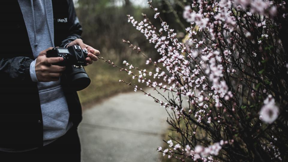people man guy camera nikon photography photographer video record photo lens road plants flower blooms tree grass hands