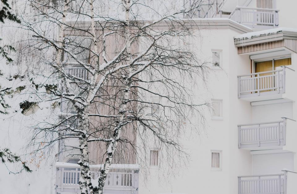 architecture building infrastructure structure establishment apartment windows condominium hotel white tree snow winter cold weather