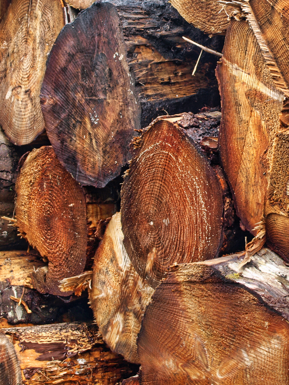 Can Pueraria Mirifica Be Taken With Natural Herbs