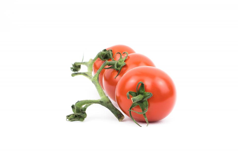 tomato plant crops fruit red fresh leaves green