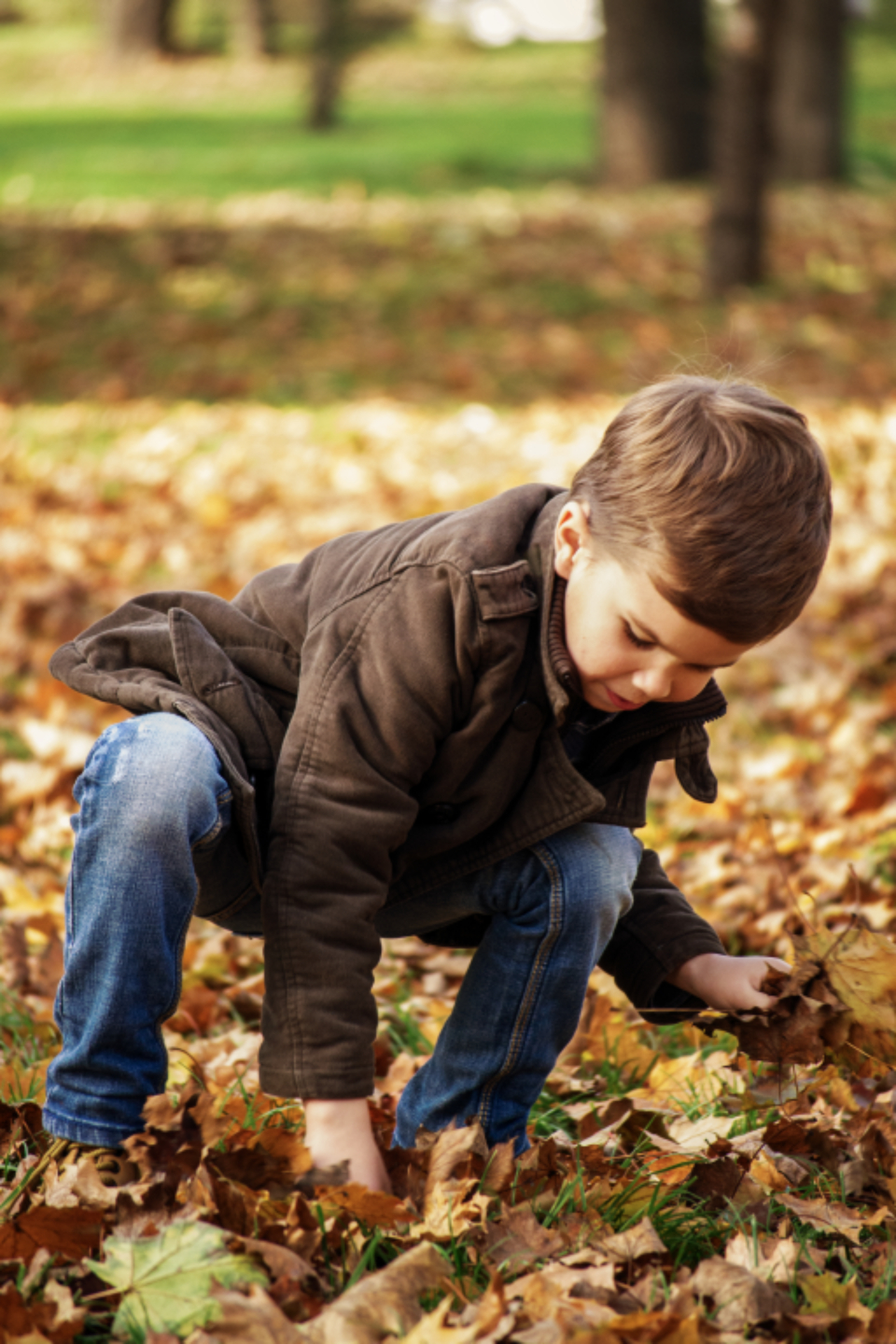 autumn outdoors games nature little fall kid happy childhood season leaf small young boy picking park collecting fashion junior style child clothes toddler child playing brown leaves people son