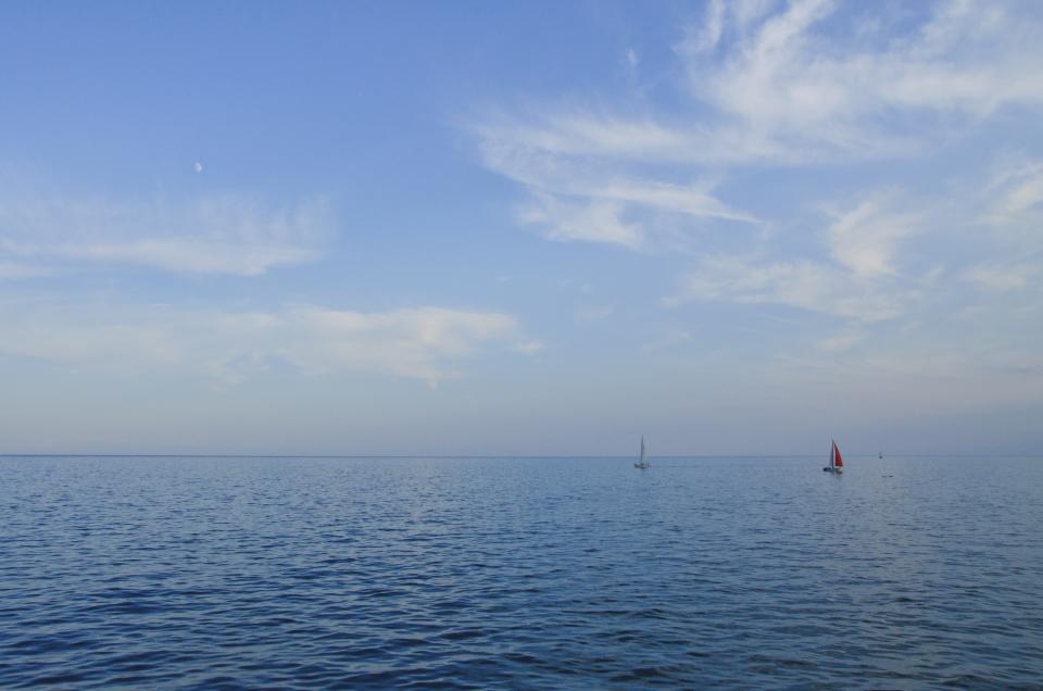 free photo of sailboats  ocean
