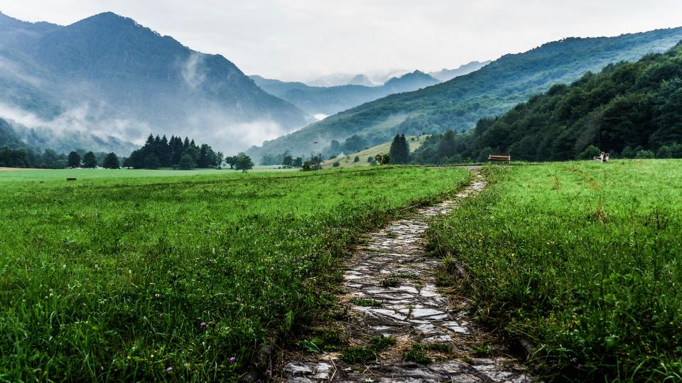 green grass field path trail landscape nature mountains valleys rural countryside fog peaks hills trees forest