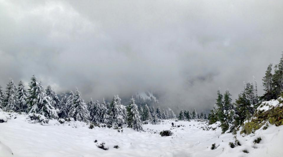 snow winter mountain hills landscape adventure view sky clouds fog trees pines