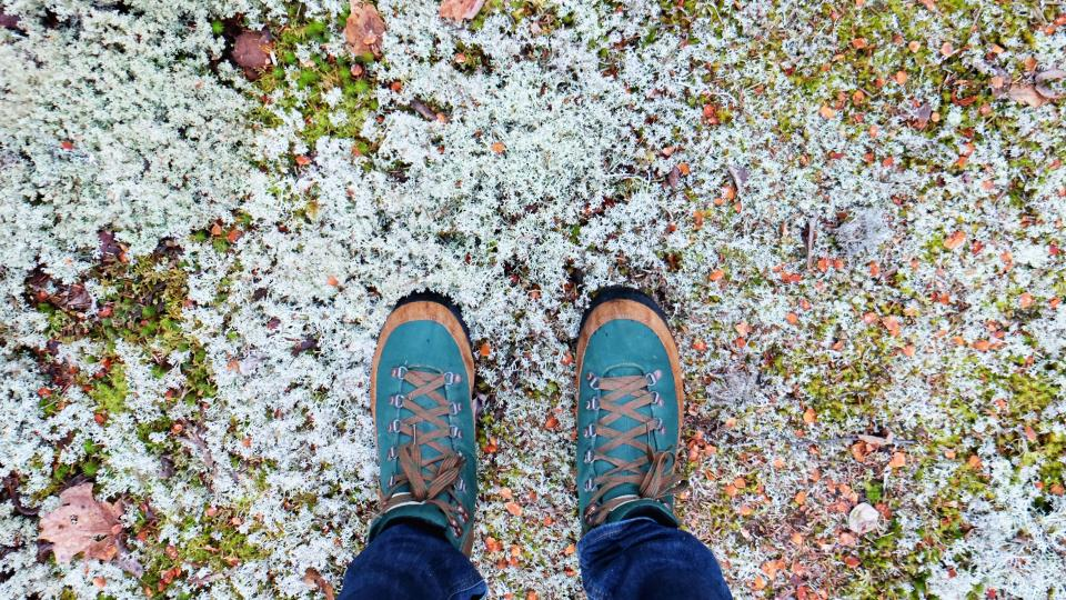 shoes sneakers fashion ground snow nature