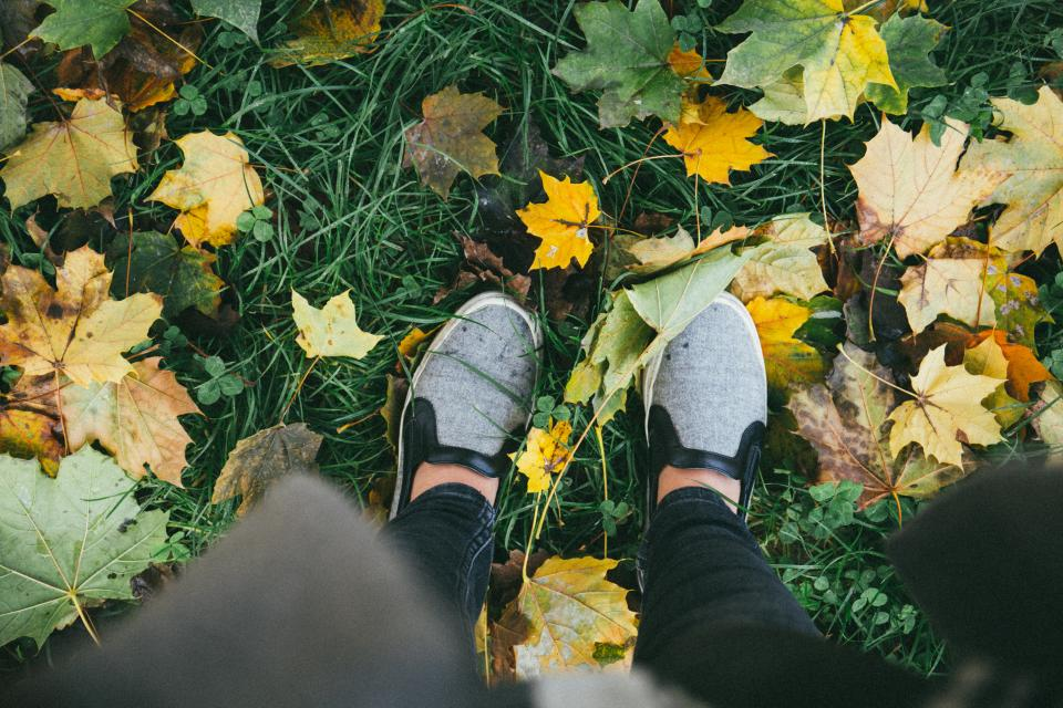 shoes footwear green grass outdoor travel leaves fall autumn