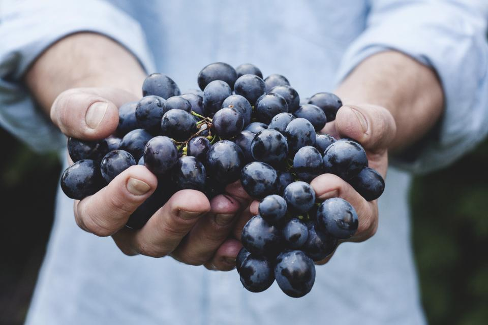 blueberries hands fruits healthy food
