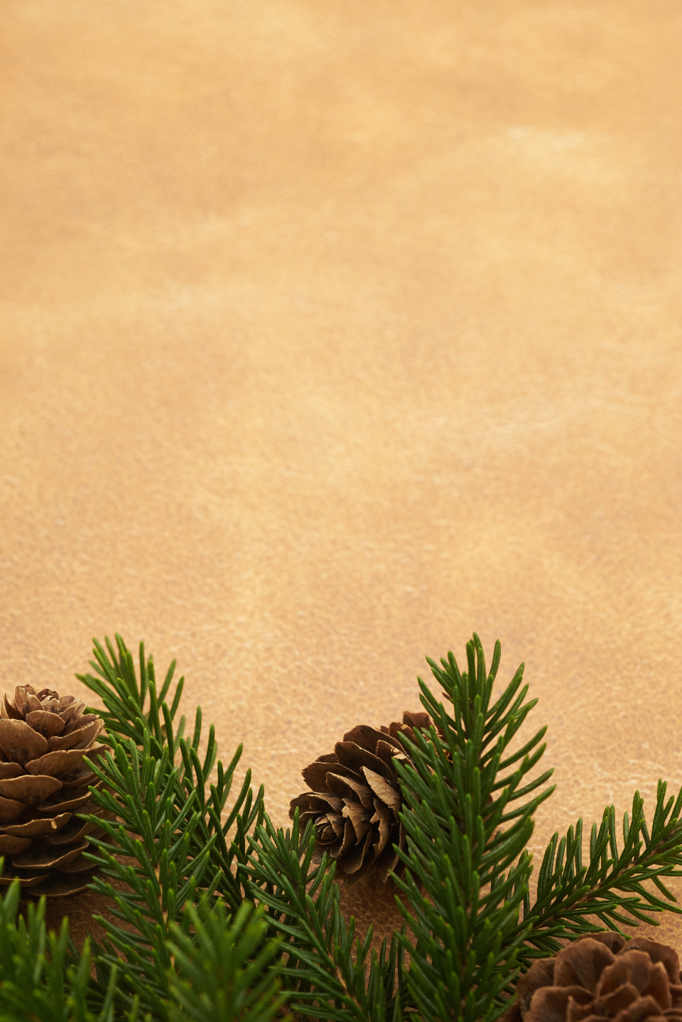 seasonal backgrounds christmas flat lay pine tree branches festive cone copyspace holiday merry xmas background