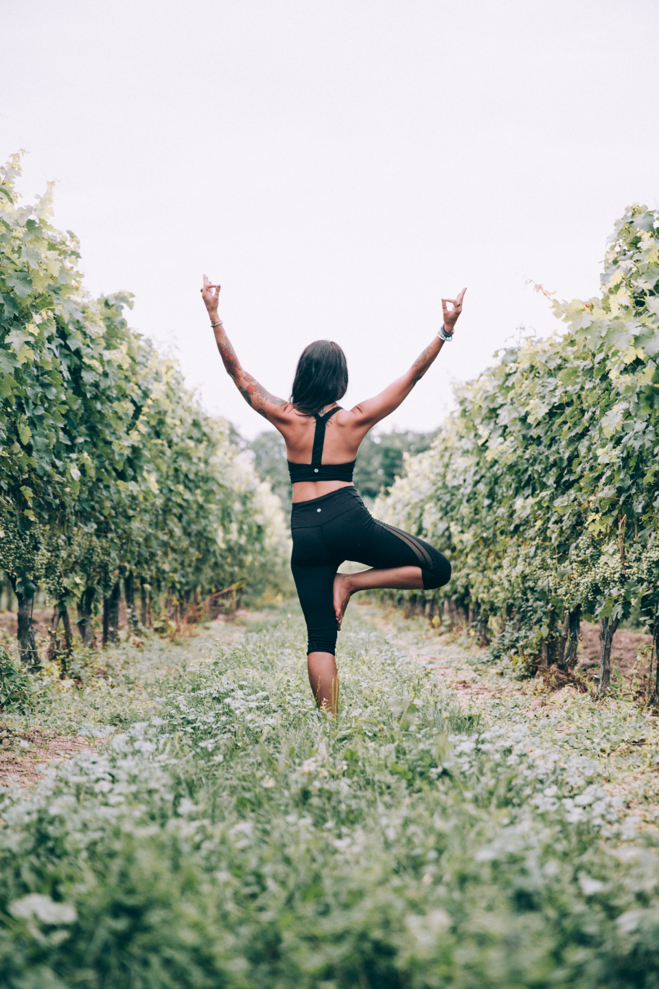woman yoga tree pose vineyard outdoors nature fit active healthy female stretch exercise balance fitness workout freedom harmony energy meditation person relax sport wellness