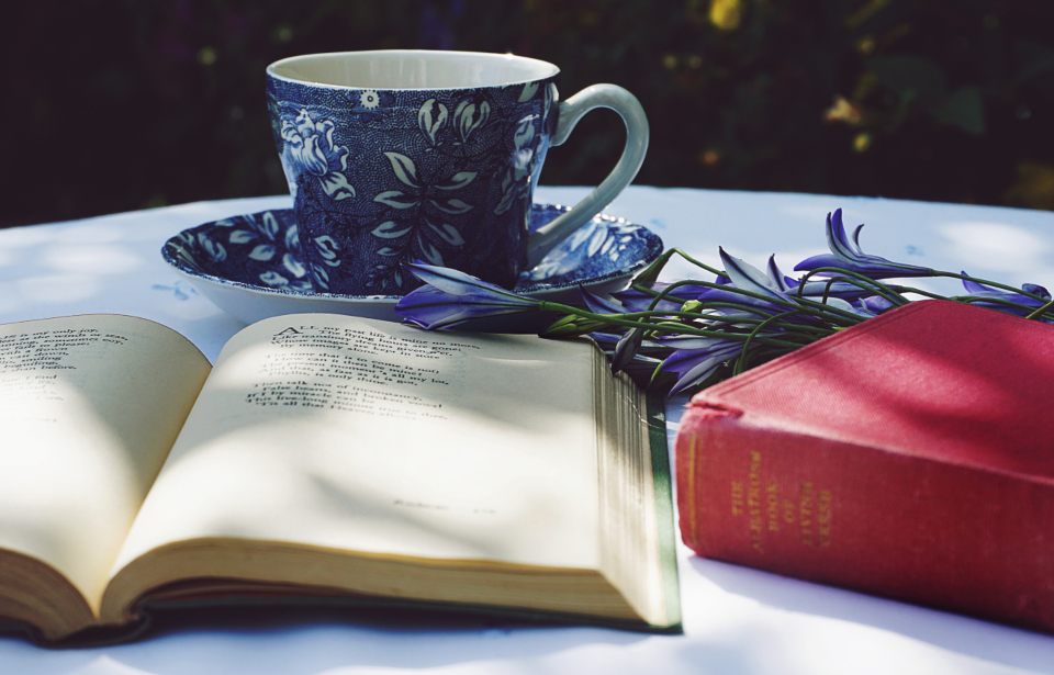 teacup teacups drinks books poetry reading literature old books garden sunlight flowers