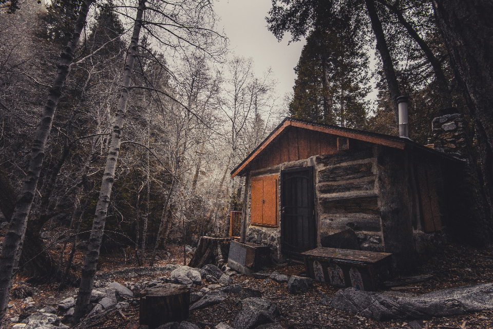 cabin woods abandoned forest cold frost home outdoors rocks travel trees winter wooden