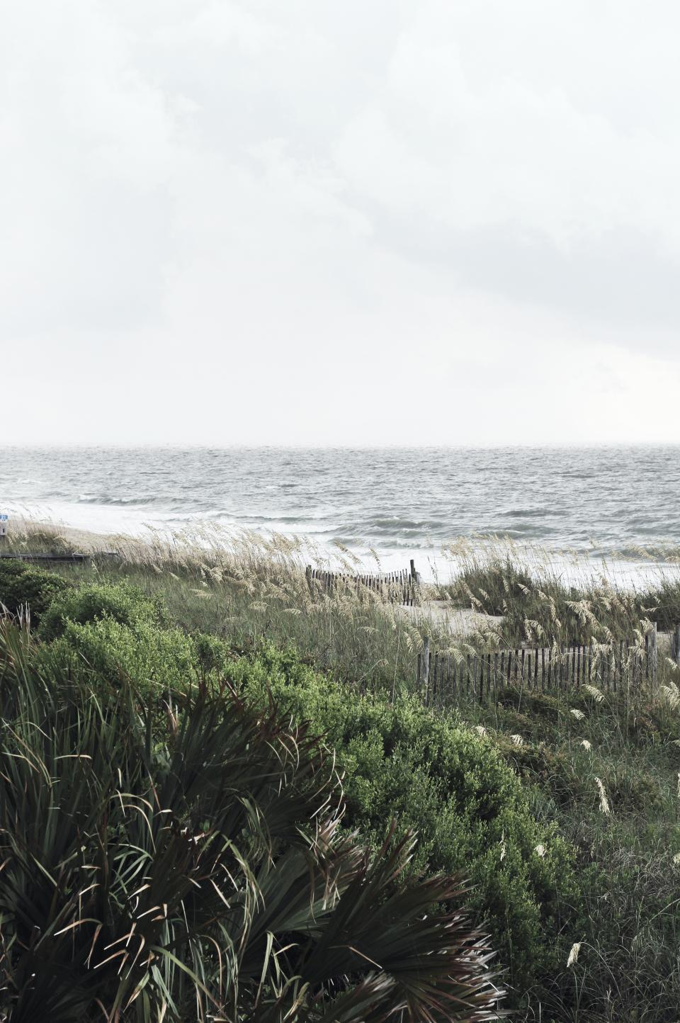 sea ocean water waves nature green grass nature coast outdoor horizon