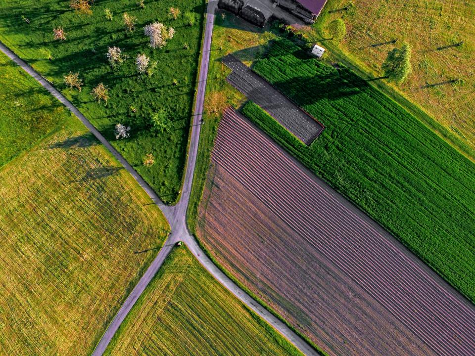 green field farm nature road path outdoor aerial view