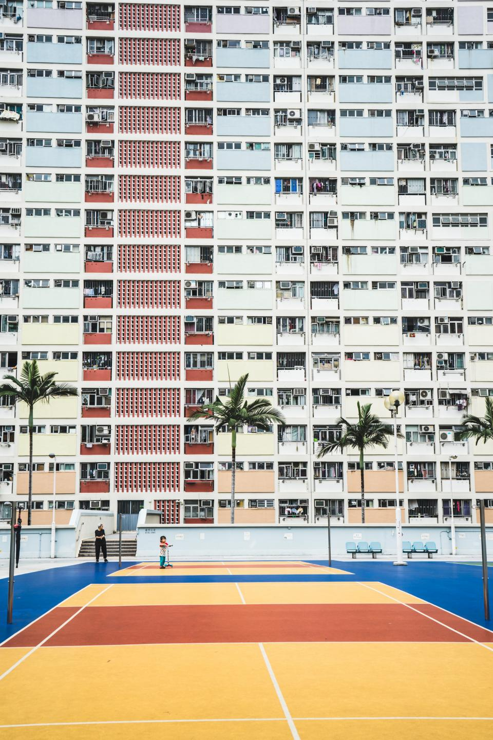 hotel building city urban guy player man basketball court ring coconut trees windows panes chair