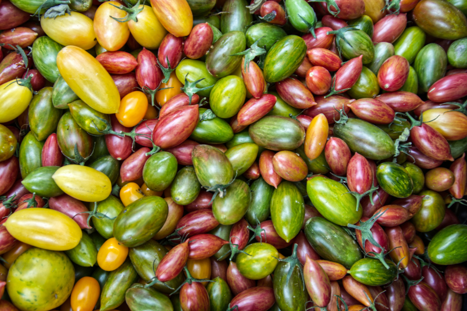 colorful tomatoes background market organic food fruit fresh harvest garden healthy farming ingredient texture natural vegetable