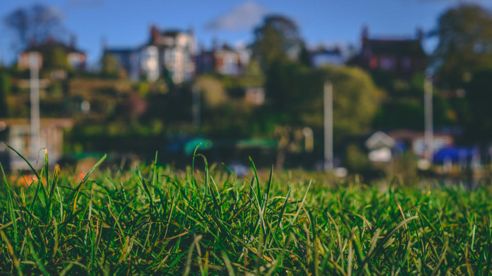 grass landscape closeup sky blue green boat house autumn bokeh