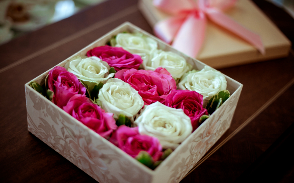 pink white roses box punnet romantic love flowers woman gift present fauna nature people