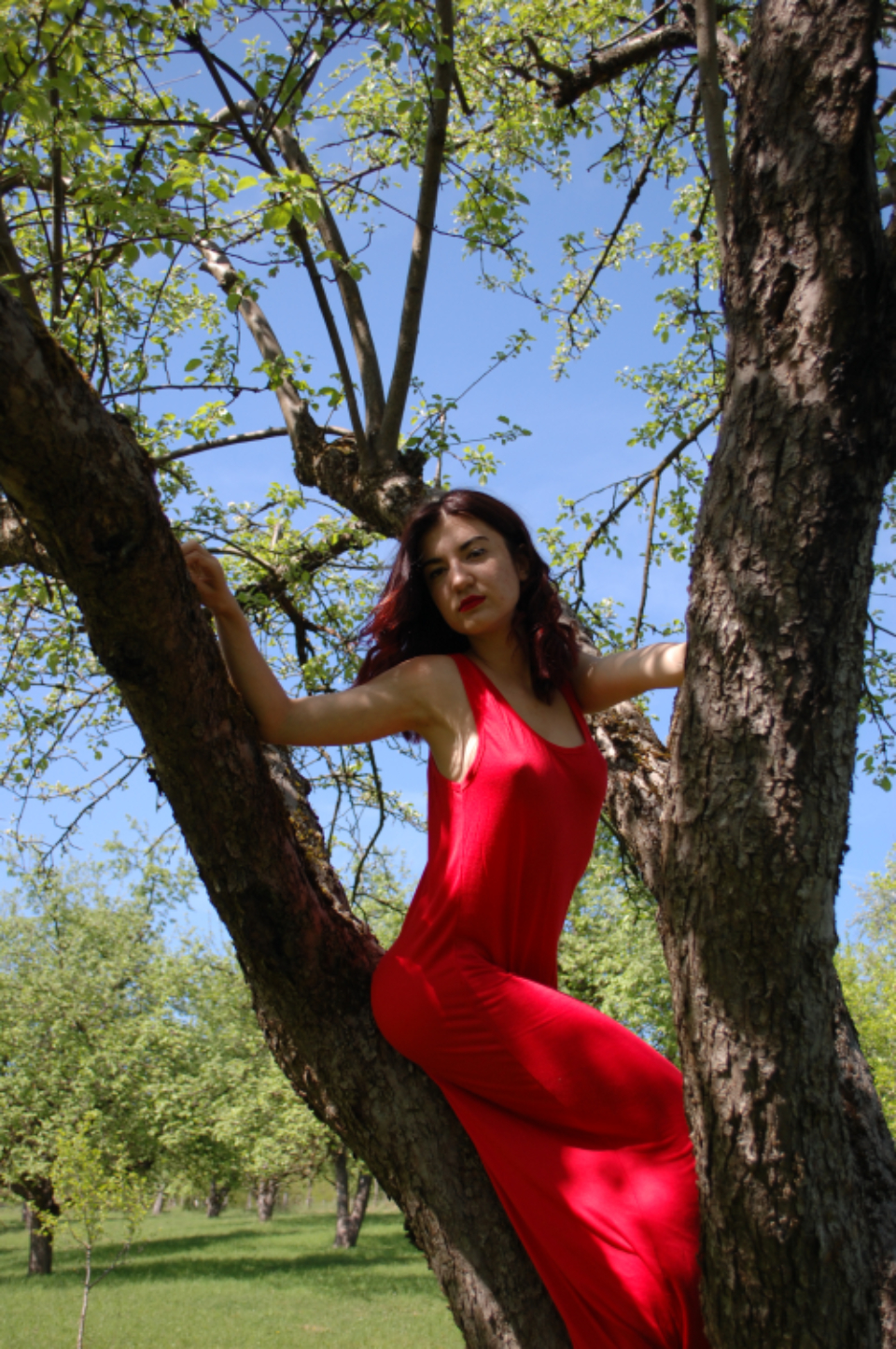 woman dress tree park nature female girl red dress blue sky.