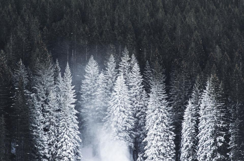 nature landscape mountain woods forest snow winter cold weather trees dark travel adventure