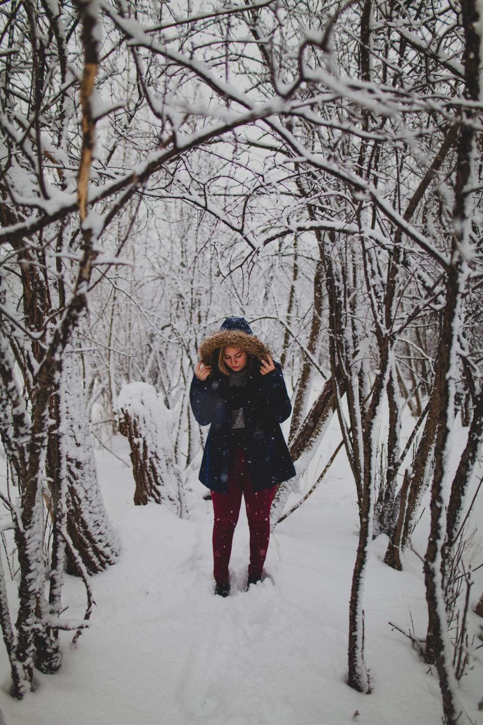 people woman girl snow winter trees plant branch footprint travel nature outdoor